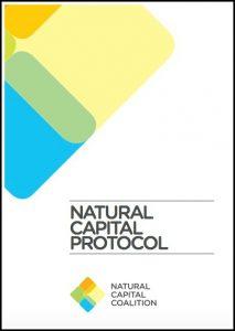 ¿Por qué es beneficioso para las empresas aplicar el Protocolo del Capital Natural?
