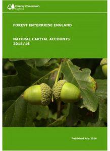 El valor de los bosques de Inglaterra es de 14 120 M€