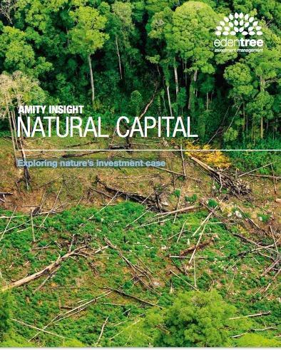 Capital natural, explorando el caso de invertir en naturaleza
