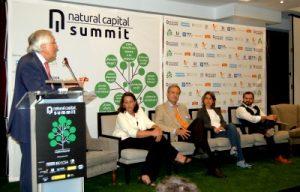 El capital natural en el tercer sector